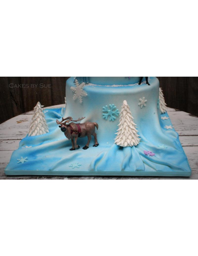 Plane Birthday Cake Melbourne